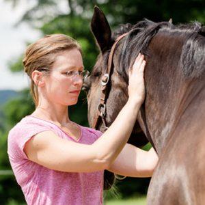 Osteopathie Behandlung mit Pferd